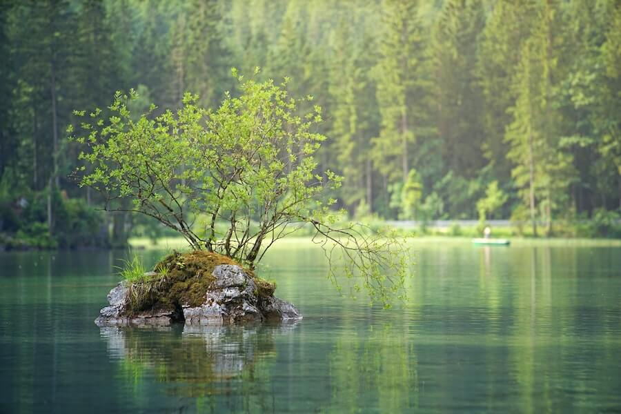Imagen ¿Cuáles son las principales alteraciones hidrológicas de un curso fluvial?