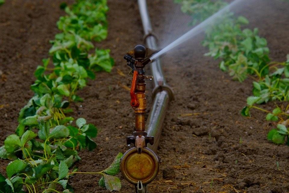Imagen 478 millones destinados a la reutilización aguas residuales en clave de 'Economía Circular'