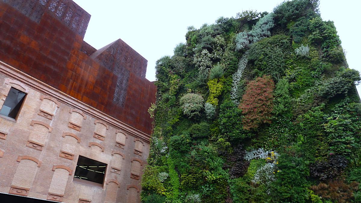 Imagen Fachadas verdes para hacer las edificaciones más sostenibles y resilientes