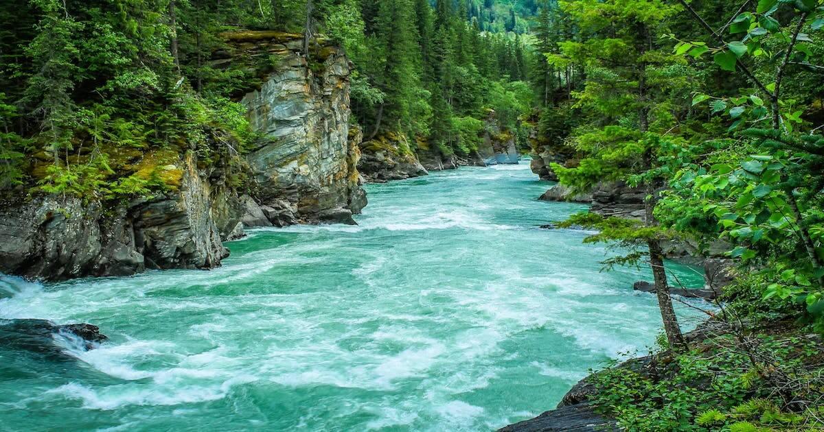 Imagen ¿Qué es un ecosistema fluvial? Te lo explicamos en vídeo