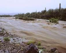 181019 agua tucson